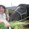 メンバーたちもお隣の馬も、みんな元気でした。午後は、毎日新聞社熊本支局から山田記者が取材に来られました。