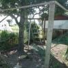 昨日は連休とあって、とても賑やかでした。鶏小屋のリフォームをしました。