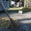 いよいよお薬師様の銀杏の落ち葉掃除も大詰めです。