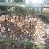 合間に、オルモさんの薪づくりをしました。