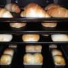 合間にアイスで涼をとりながら、今日もみんなでパン焼いています。
