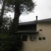 お隣のオルモさんの屋根と雨樋の掃除をしました。