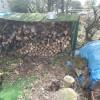 今日は活動の合間に、お隣のオルモさんの薪の整理をしました。