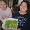 簡易宿泊所『野菜ty(のなてぃー)』も、また新しいご宿泊のお客様が下見にこられました。