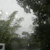 早朝は朝日も見えましたが、今、いよいよ台風がやってきて酷い風雨です。夢屋のメンバーはパンづくりや『夢屋だより』の折り込みをしています。皆様もどうかお気をつけください。