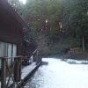 森の家『野菜ty(のなてぃー)』は雪模様でした。今日も皆で活動しいます。