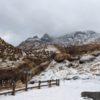 仙酔峡の滝の凍結は、見応えがあります。
